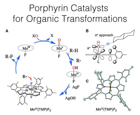 porphyrin-catalysts-for-organic-transformations-487x400